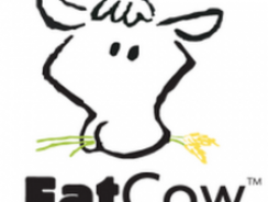 Review of FatCow Web Hosting Provider